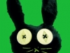 Spooky Rabbit