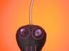 Swinging Skull_02-2010.JPG